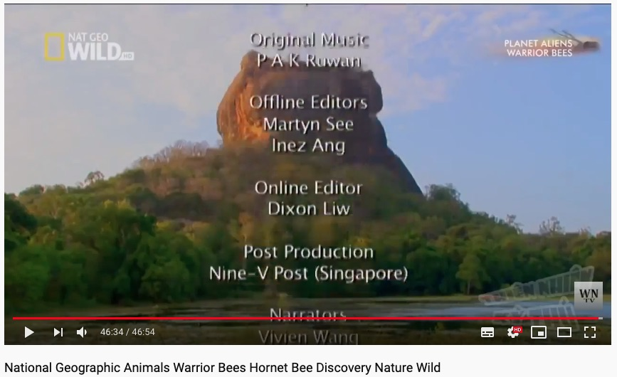 National Geographic Warrior Bees Credit